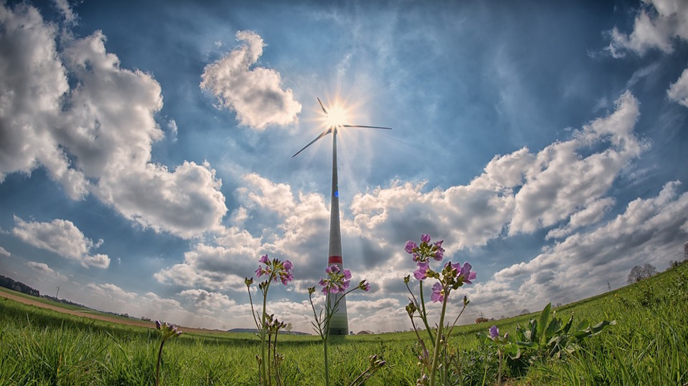 Ever Dreamed of Generating Renewable Energy Right in Your Front Yard? It May Soon be Possible!