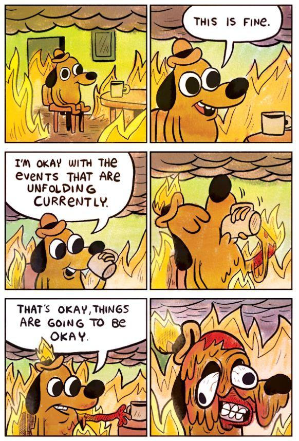The Panel of this is fine meme