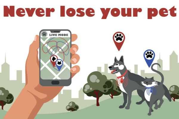 control pets
