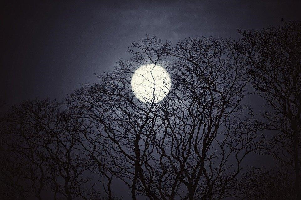 Picture: Full Moon